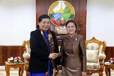 越南国会与老挝国会加强合作