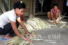 Giúp người dân huyện miền núi Thường Xuân giảm nghèo