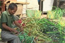 岘港老农变废为宝:利用塑料带编织垃圾筐