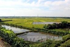 Điều chỉnh quy hoạch sử dụng đất Hà Nội, Hải Phòng và Lâm Đồng