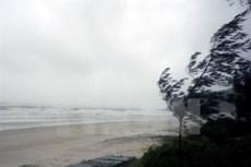 Thời tiết ngày 14/6: Xuất hiện áp thấp nhiệt đới trên Biển Đông, miền Bắc có mưa trên diện rộng