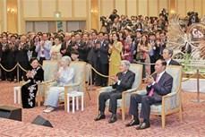 越南国家主席陈大光出席越日建交45周年纪念典礼