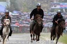 Giải đua ngựa truyền thống Bắc Hà năm 2018