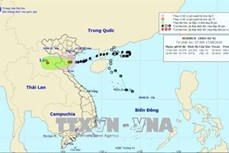 第四号台风登陆清化省并减弱为热带低压