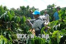 Người nông dân đam mê sáng chế máy nông nghiệp Đỗ Đức Quang