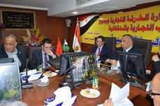 越南与埃及将扩大在多个领域中的合作关系