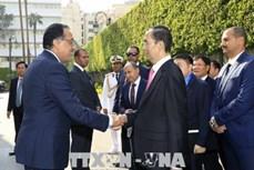 陈大光建议埃及政府为越南农水产品打入埃及连锁超市创造便利条件