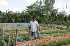Anh Nguyễn Minh Đời lãi lớn nhờ lót bạt nuôi lươn trên ruộng