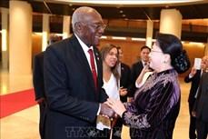 越南国会主席阮氏金银会见古巴国务委员会第一副主席兼第一副部长会议主席
