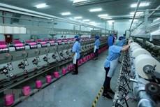 越南引进外资30周年:隆安省加强就地投资促进工作