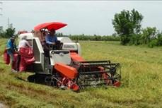 Những thách thức về nông nghiệp sạch - Bài 1