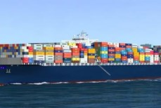 越南对印度的商品出口实现跨越式增长
