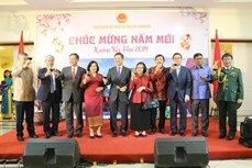 海外各地越南人喜迎新春传递新春祝福