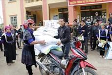 Hỗ trợ phòng chống rét cho trâu, bò tại huyện vùng cao Mù Cang Chải