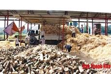 Phát triển kinh tế lâm nghiệp gắn với chế biến tại huyện vùng cao Lang Chánh