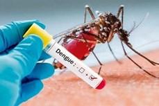 Sốt xuất huyết Dengue tiếp tục tăng mạnh ở tỉnh Kon Tum