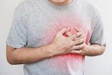 Các nhà khoa học Nhật Bản muốn thử nghiệm chữa bệnh tim bằng tế bào gốc