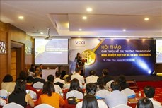 越南开拓中国市场的空间仍然很大