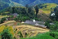 """Du lịch góp phần đưa nông thôn trở thành những """"miền quê đáng sống"""""""