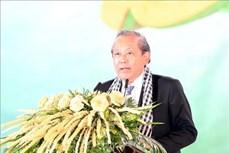 """Khai mạc Lễ hội dừa Bến Tre với chủ đề """"Cây dừa trên đường hội nhập và phát triển bền vững"""""""