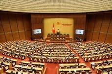 越南第十四届国会第八次会议通过《劳动法(修正版)》