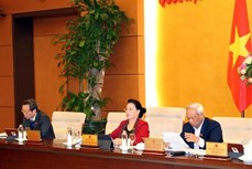 国会主席阮氏金银主持召开越南国会常务委员会第39次会议