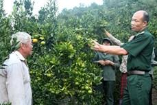 Đảng viên quân hàm xanh giúp dân nghèo biên giới Lào Cai