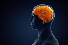 Những loại nước ép trái cây giúp tăng cường trí nhớ của bạn