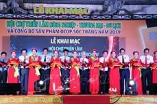 Khai mạc tuần Lễ hội Oóc Om Bóc - Đua ghe Ngo Sóc Trăng Khu vực Đồng bằng sông Cửu Long năm 2019