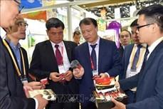 越南参加第二届中国国际进口博览会