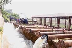 Điều tiết nguồn nước để giảm tình trạng thiếu nước vụ Đông Xuân 2019-2020