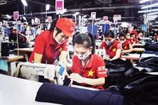 年底胡志明市就业市场呈现出活跃发展态势
