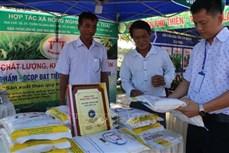 Nâng cao chất lượng thương hiệu Gạo Phú Thiện
