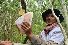 Hai nghề độc đáo riêng có ở Cà Mau trở thành Di sản văn hóa phi vật thể cấp quốc gia