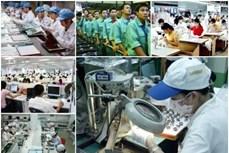 2020年胡志明市预计有32.3万个工作岗位的需求