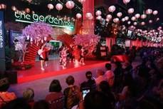 许多特色文化活动在越日文化日举行