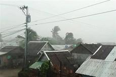 """台风""""北冕""""袭菲律宾已致2死数千人被疏散"""