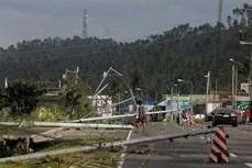 """台风""""北冕""""来袭菲律宾遇难者已升至10人"""