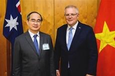 胡志明市愿与澳大利亚加强教育和创新领域的合作