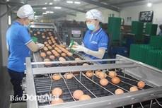 Đồng Nai sẽ đầu tư trên 28.000 tỷ đồng xây dựng Xuân Lộc thành huyện nông thôn mới kiểu mẫu