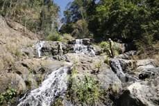 Kon Tum bảo vệ rừng gắn với phát triển du lịch