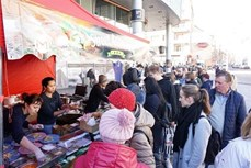 """""""体验越南""""美食节在捷克举行"""