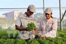 Bắc Giang ứng dụng tiến bộ khoa học công nghệ vào sản xuất nông nghiệp