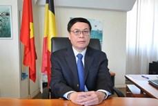 越南国会与欧洲议会在发展越南与欧盟关系中扮演重要作用