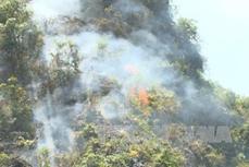 Nhiều vụ cháy rừng xảy ra ở huyện Trạm Tấu