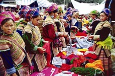Nghề làm giấy của người Mông ở Sơn La