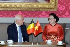 越南国会主席会见比利时联邦参议长布罗奇