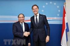 越南驻荷兰大使吴氏和:越荷两国关系将升级为全面伙伴关系