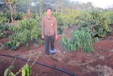 Đắk Lắk nhân rộng các mô hình tưới tiên tiến, tiết kiệm nước