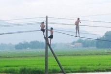 Hai em nhỏ bị thương trong vụ tai nạn điện giật ở Chiềng Khoong đã ổn định sức khỏe